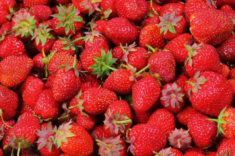 Keto Diet Strawberries